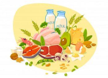 proteinerijke voeding